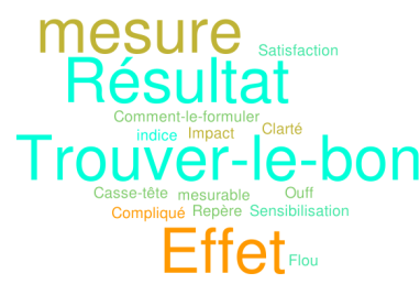 Indicateur word cloud 2